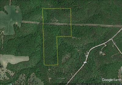Marion County Residential Lots & Land For Sale: Mc 8001