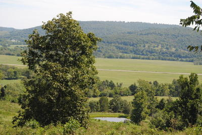Searcy County Residential Lots & Land For Sale: 996 Wiley Cove