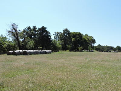 Lead Hill, Diamond City Residential Lots & Land For Sale: 281 Highway