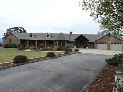 Lead Hill Single Family Home For Sale: 379 Ar-14