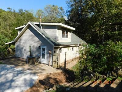 Newton County Single Family Home For Sale: Hc 73 Box 150b