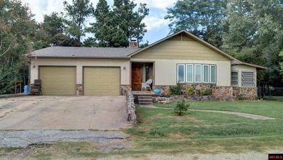 Lead Hill, Diamond City Single Family Home For Sale: 311 Mockingbird Trail