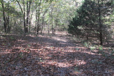 Carroll County Residential Lots & Land For Sale: 412 Highway
