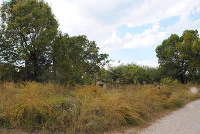 Searcy County Residential Lots & Land For Sale: 107 Quandary Drive