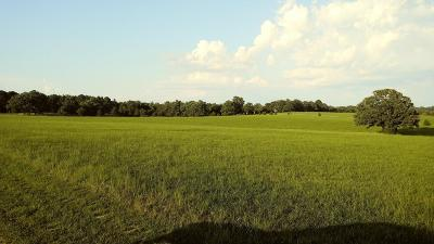 Harrison Residential Lots & Land For Sale: S 43 Highway