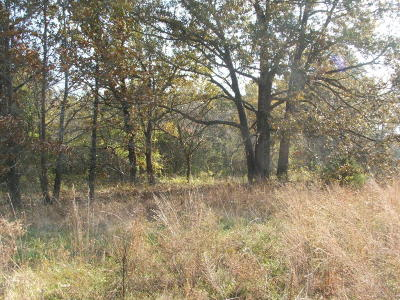 Harrison Residential Lots & Land For Sale: Tracts 1&2 Mikes Road