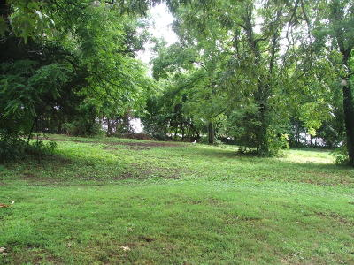 Boone County Residential Lots & Land For Sale: Lot 4 Daisy Cove