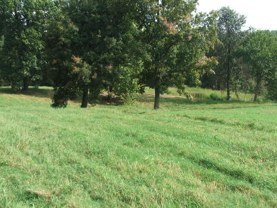 Residential Lots & Land For Sale: Wooded Hills Road