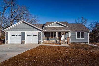 Boone County Single Family Home For Sale: 513 Paddington Street