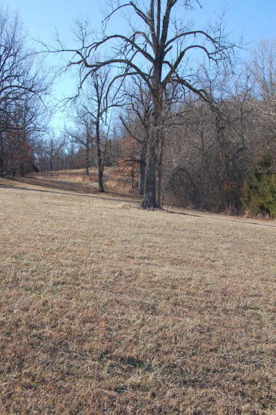 Yellville Residential Lots & Land For Sale: Hwy 268