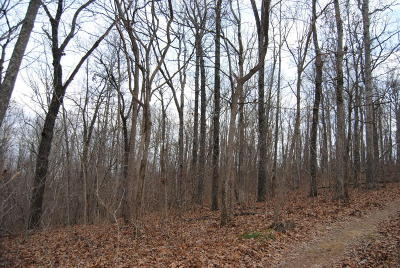 Searcy County Residential Lots & Land For Sale: Bear Skin Drive