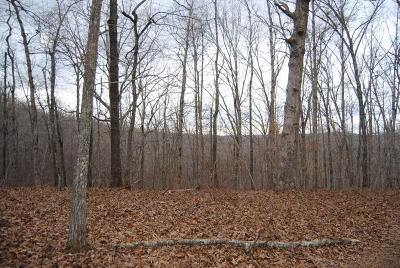 Searcy County Residential Lots & Land For Sale: 213 Courseys Drive