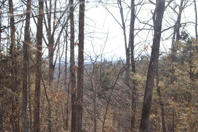 Searcy County Residential Lots & Land For Sale: 215 Courseys Drive