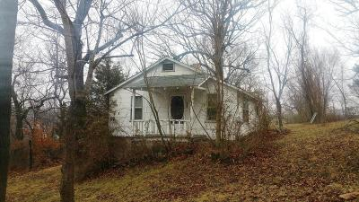 Boone County Single Family Home For Sale: 213 E South Avenue