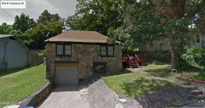 Boone County Single Family Home For Sale: 610 S Chestnut