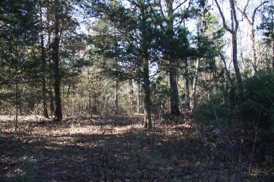 Lead Hill, Diamond City Residential Lots & Land For Sale: Lot 22 Persimmon Point