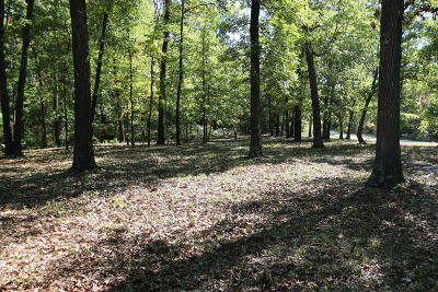 Residential Lots & Land For Sale: 1494 Wolf Springs Road