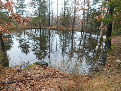 Harrison Residential Lots & Land For Sale: Thomason Drive