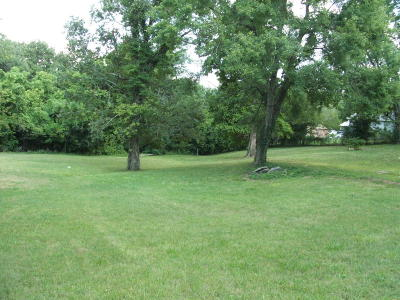 Boone County Residential Lots & Land For Sale: 803 N Rowland