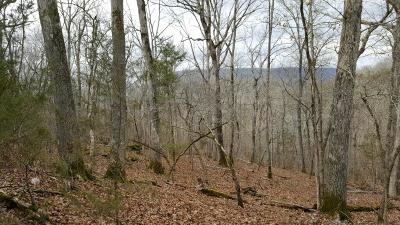 Newton County Residential Lots & Land For Sale: 30 Acres Off Of Nc 2923