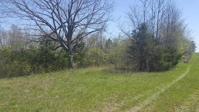 Residential Lots & Land For Sale: Hwy 7 South