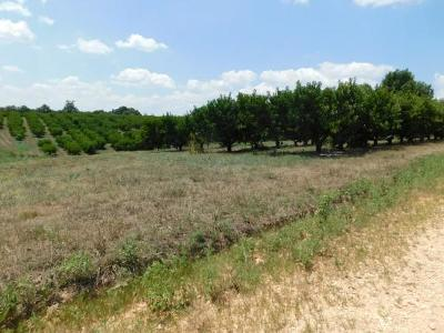 Residential Lots & Land For Sale: White Oak Road