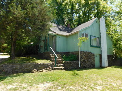 Newton County Single Family Home For Sale: 104 Mountain Street