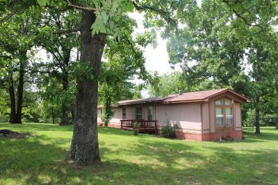 Lead Hill, Diamond City Single Family Home For Sale: 1360 Ar-14