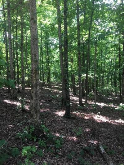 Yellville Residential Lots & Land For Sale: Ramblewood Trail