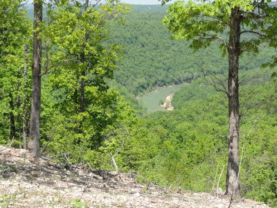 Searcy County Residential Lots & Land For Sale: Coza Home Road