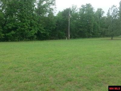 Lead Hill, Diamond City Residential Lots & Land For Sale: 112 Grand Avenue