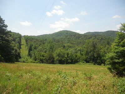 Jasper Residential Lots & Land For Sale: Nc 2500(Erbie Campground Rd)