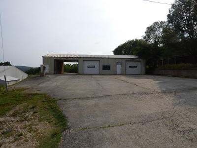 Lead Hill, Diamond City Commercial For Sale: 147 Ar-14