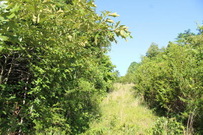 Marion County Residential Lots & Land For Sale: Off Hwy 62 B