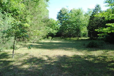 Searcy County Residential Lots & Land For Sale: Hwy 65 Highway