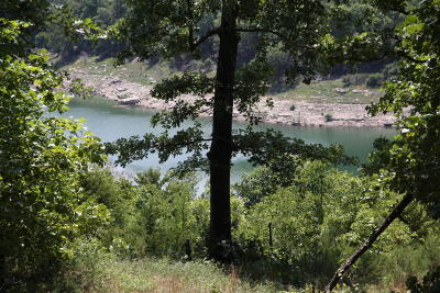 Yellville Residential Lots & Land For Sale: Webb's Landing & Pilots Cove