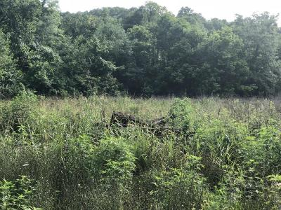 Omaha Residential Lots & Land For Sale: W Enon Road
