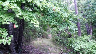 Omaha Residential Lots & Land For Sale: Stonington Road