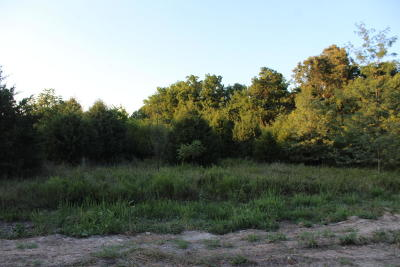 Marion County Residential Lots & Land For Sale: Marion County 6032