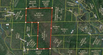 Newton County Residential Lots & Land For Sale: Smith Mtn Rd