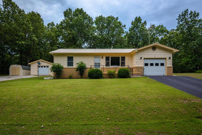 Lead Hill, Diamond City Single Family Home For Sale: 616 W Pine Street