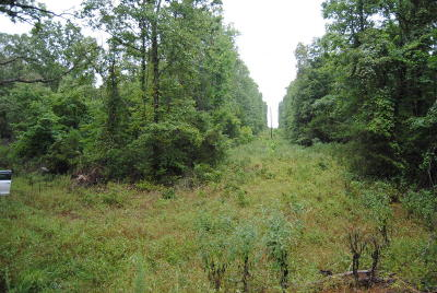 Searcy County Residential Lots & Land For Sale: 1501 Dry Creek Road
