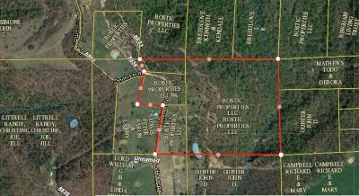 Newton County Residential Lots & Land For Sale: Nc 8800/Smith Mtn Rd.