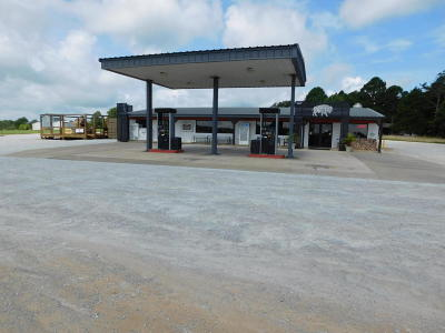 Newton County Commercial For Sale: 12677 Ar-43