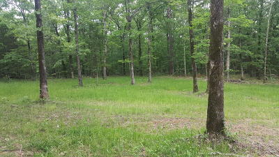 Jasper Residential Lots & Land For Sale: County Road 6450 - East 20 Acres