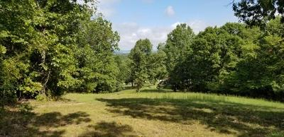 Marion County Residential Lots & Land For Sale: Hwy 268 (Locust Road)