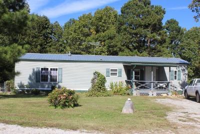 Omaha Single Family Home For Sale: 8736 Turney Lane