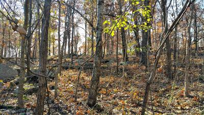 Searcy County Residential Lots & Land For Sale: Crow Drive