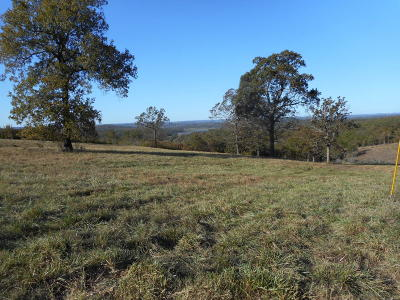 Marion County Residential Lots & Land For Sale: 36 Terry Lane