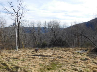 Jasper Residential Lots & Land For Sale: Hc72 Box 226 McElroy Gap